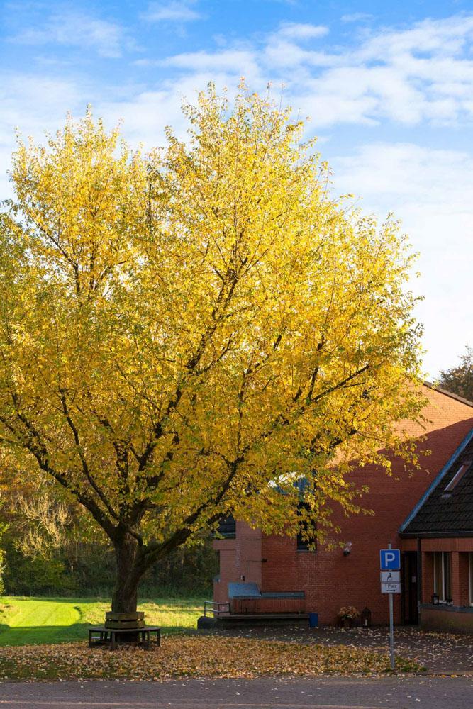 Gemeindehaus  in Bokhorst_Gemeinde Schillsdorf