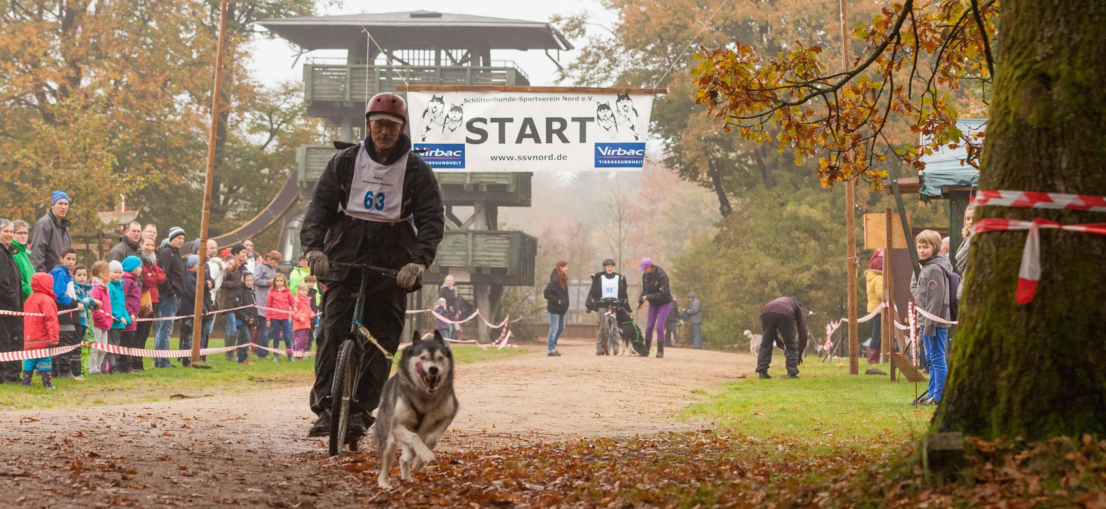 Größtes Zughunderennen des Nordens im Erlebniswald Trappenkamp !