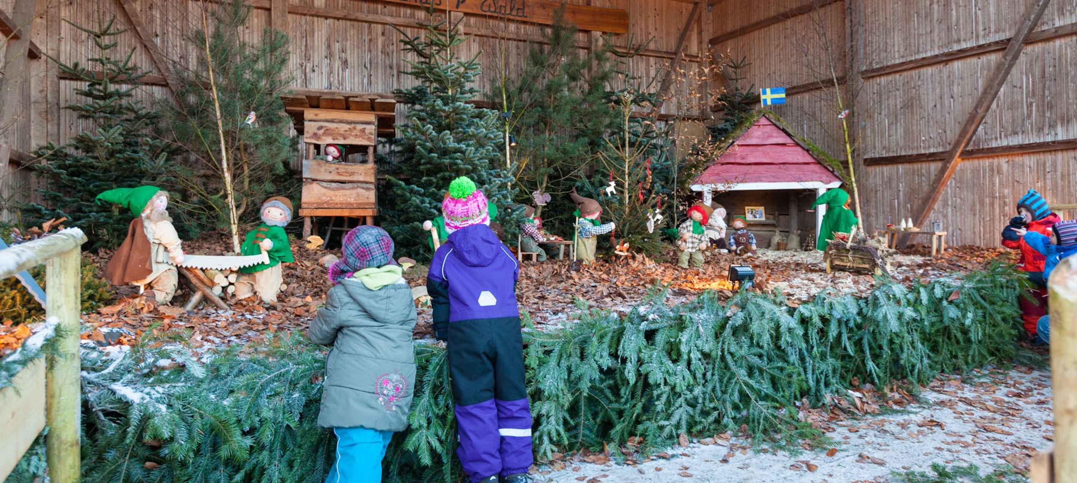 Erlebniswald – Waldweihnacht für Schulklassen – noch Plätze frei!