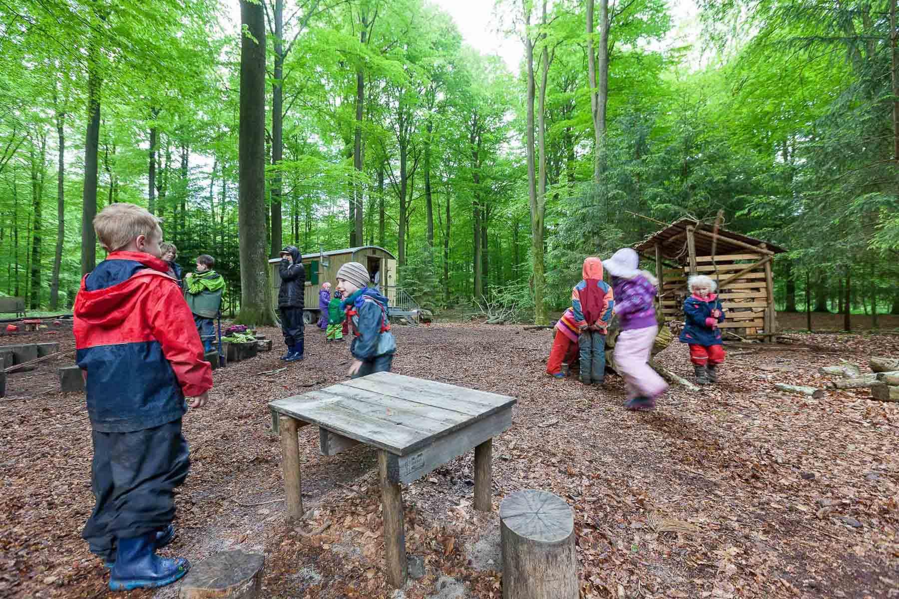 Bokhorster Waldkinder müssen vorerst nicht umziehen