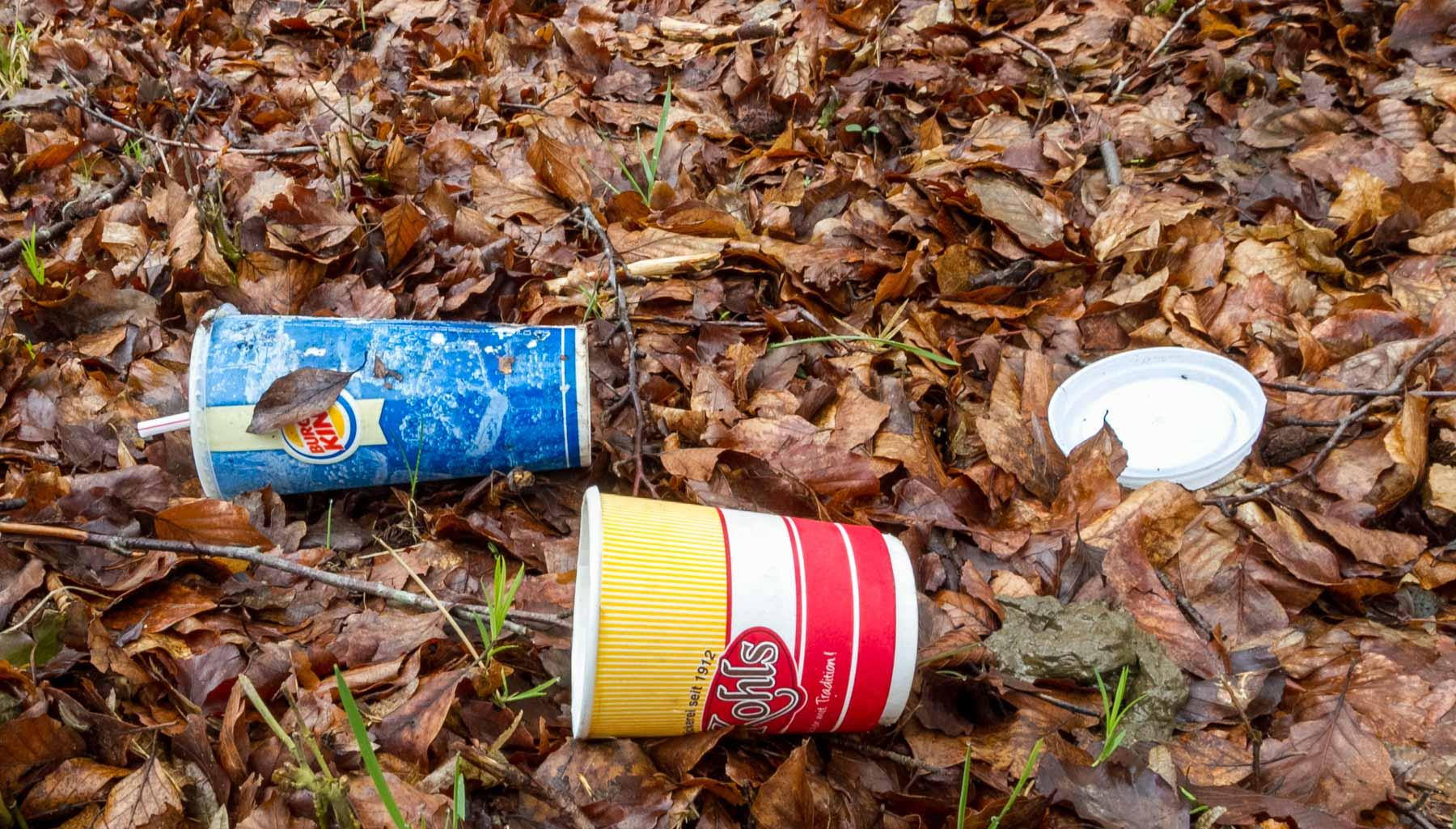 Hausmüllentsorgung in freier Wildbahn ist nicht nur in Bönebüttel ein Ärgernis. Neben der Müllbeseitigung standen in der Gemeinde jetzt auch die Kosten für Kläranlagenreinigungen zur Diskussion