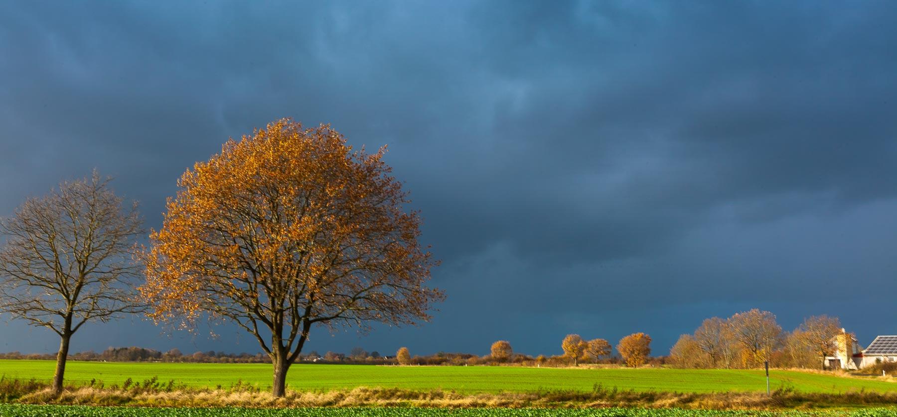 Abschied vom Herbst – Sturm zieht übers Land