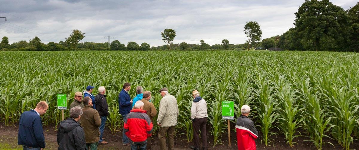 Schleswig-Holsteins Bauern blicken verhalten auf die kommende Ernte