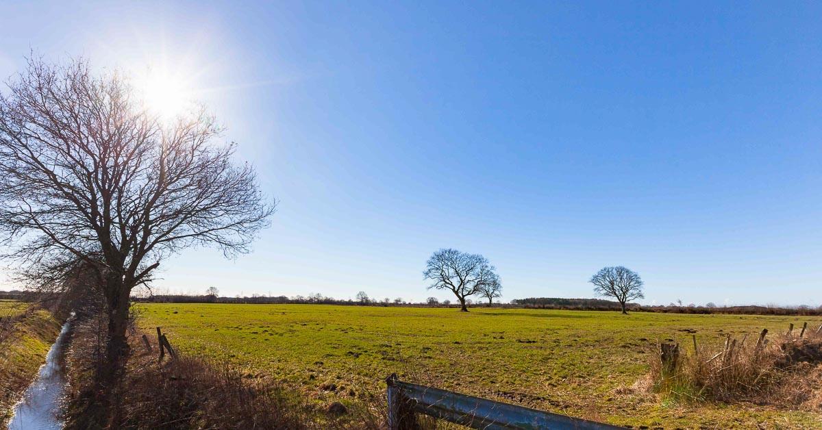 In Tasdorf könnte die größte Windeignungsfläche im Kreis Plön entstehen. Davon sind auch die Gemeinden Bönebüttel, Großharrie und Schillsdorf betroffen