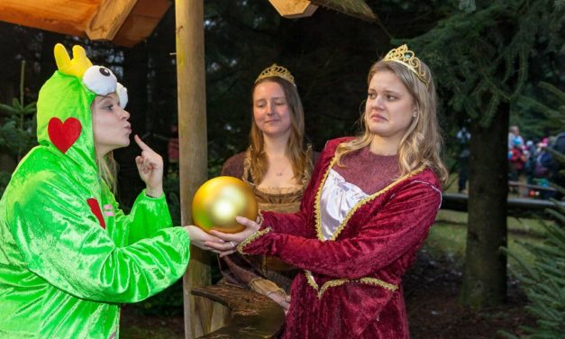 """""""Küss mich!"""" Die Waldweihnacht 2017 im Erlebniswald Trappenkamp wird märchenhaft."""