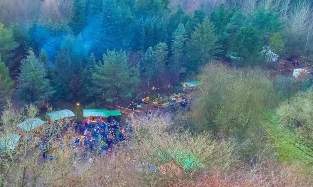 Besucher, Teilnehmer und Veranstalter erlebten eine zauberhafte und gelungene Waldweihnacht im Erlebniswald Trappenkamp.