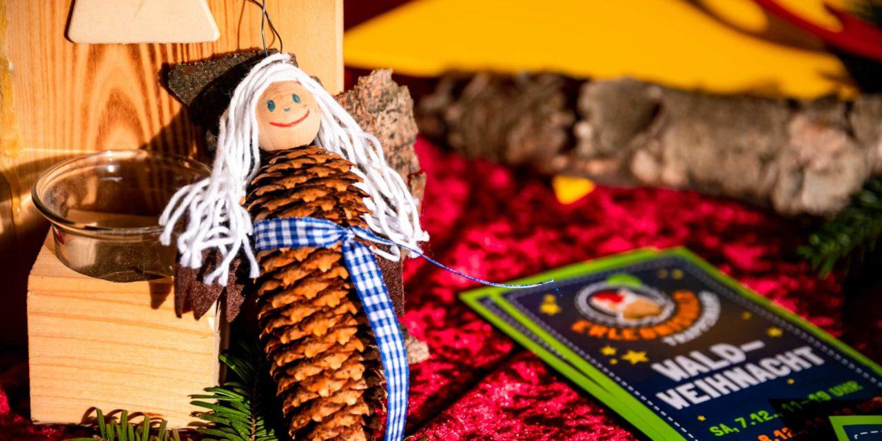 Im Erlebniswald Trappenkamp laufen die Vorbereitungen für eine zauberhafte Waldweihnacht auf Hochtouren.
