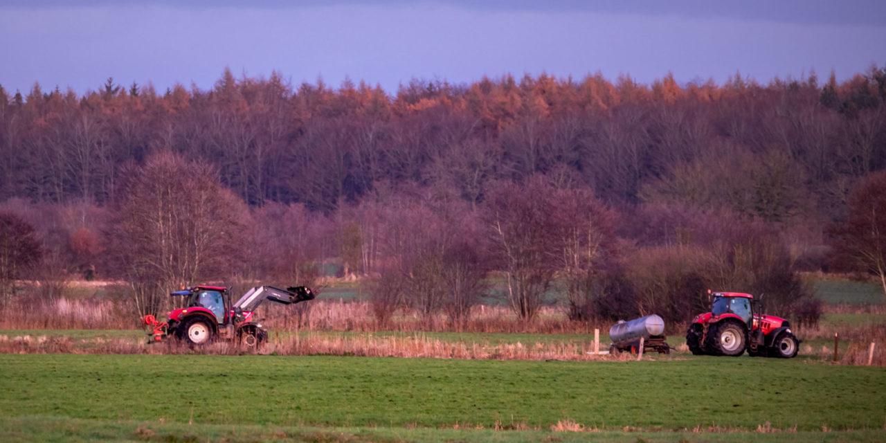 Schleswig-Holstein / Wenige Tage nach der Berlinfahrt der Bauern ziehen die Schillsdorfer Henry von Bülow und Thomas Prien sowie Henrik Loop aus Bönebüttel Bilanz.